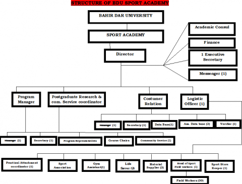 Organizational Structure Sport Academy